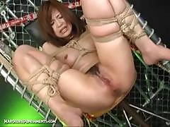 Extreme Japanese Bdsm Sex - Marina 12